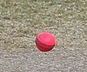 Day/Night Matches With Pink Balls Planned For WICB Regional 4-Day Games